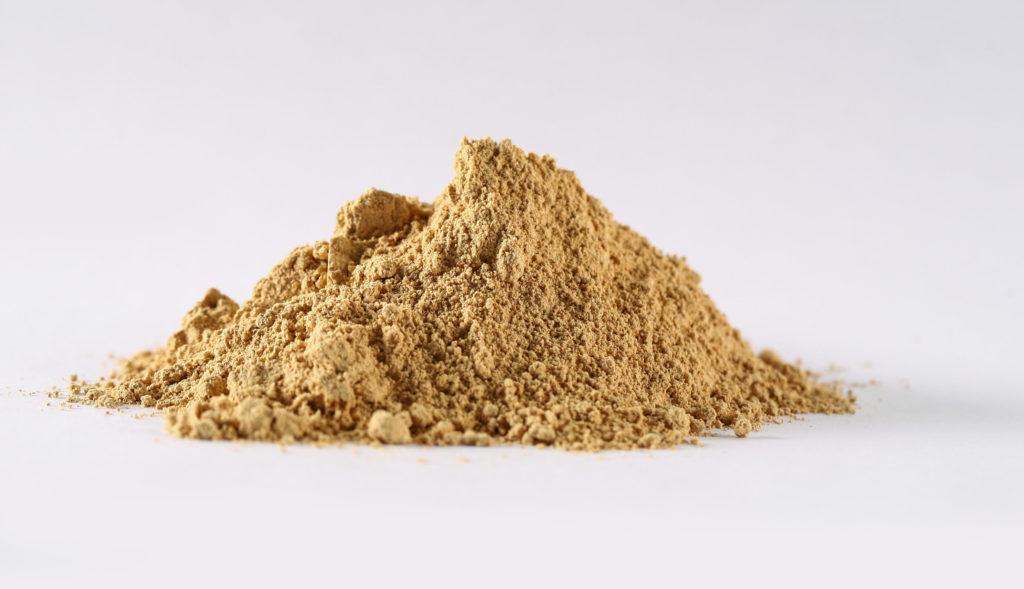 reishi powder immune system